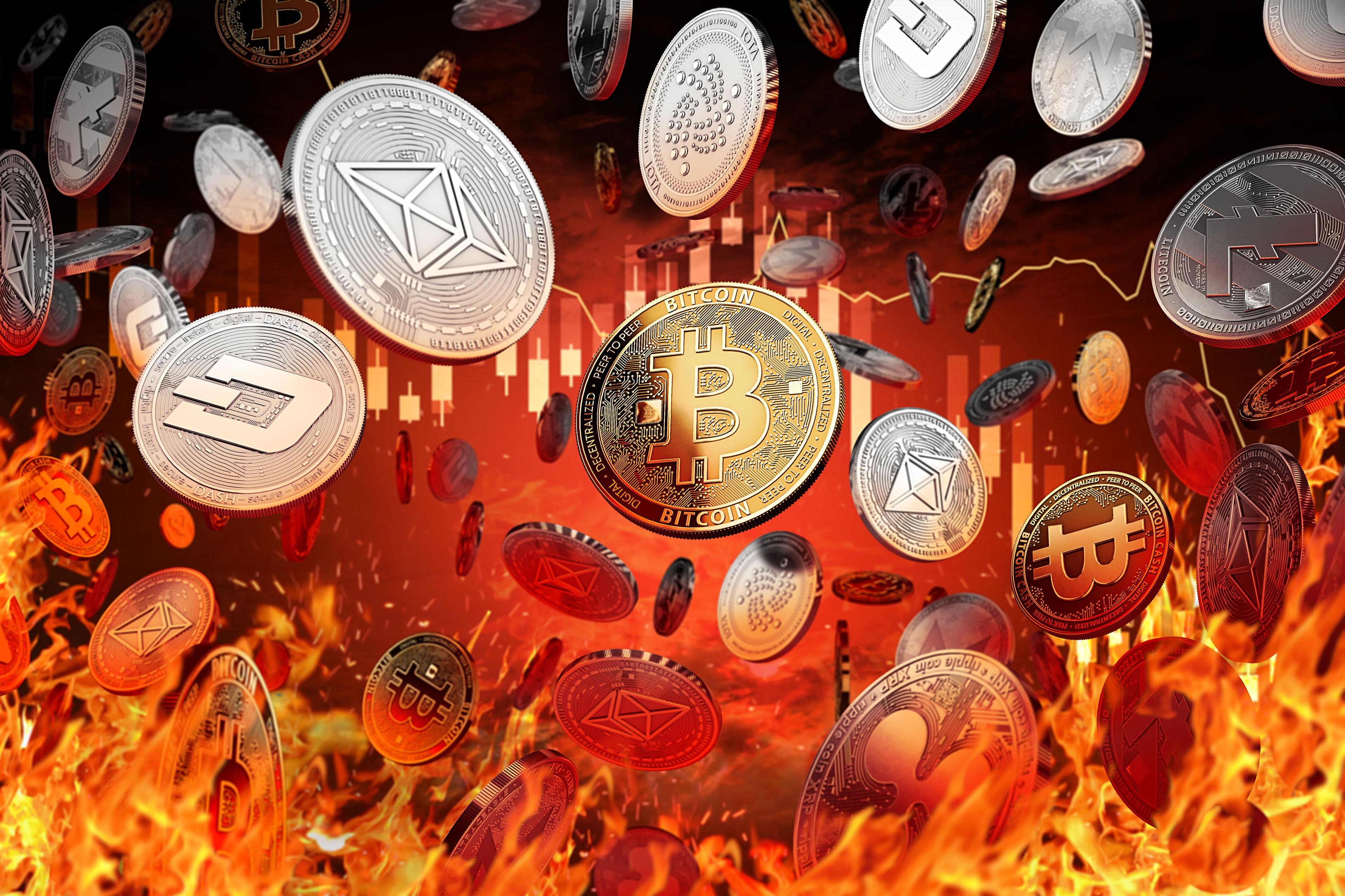zebpay bitcoin rate tradingview btc dash